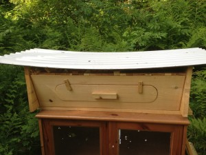 Our Bee Hive